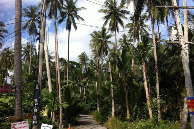 Drei Wochen mit dem Rucksack durch Thailand. Backpacking durch Thailand. Reisetipps Thailand; Reisetipps Koh Samui;