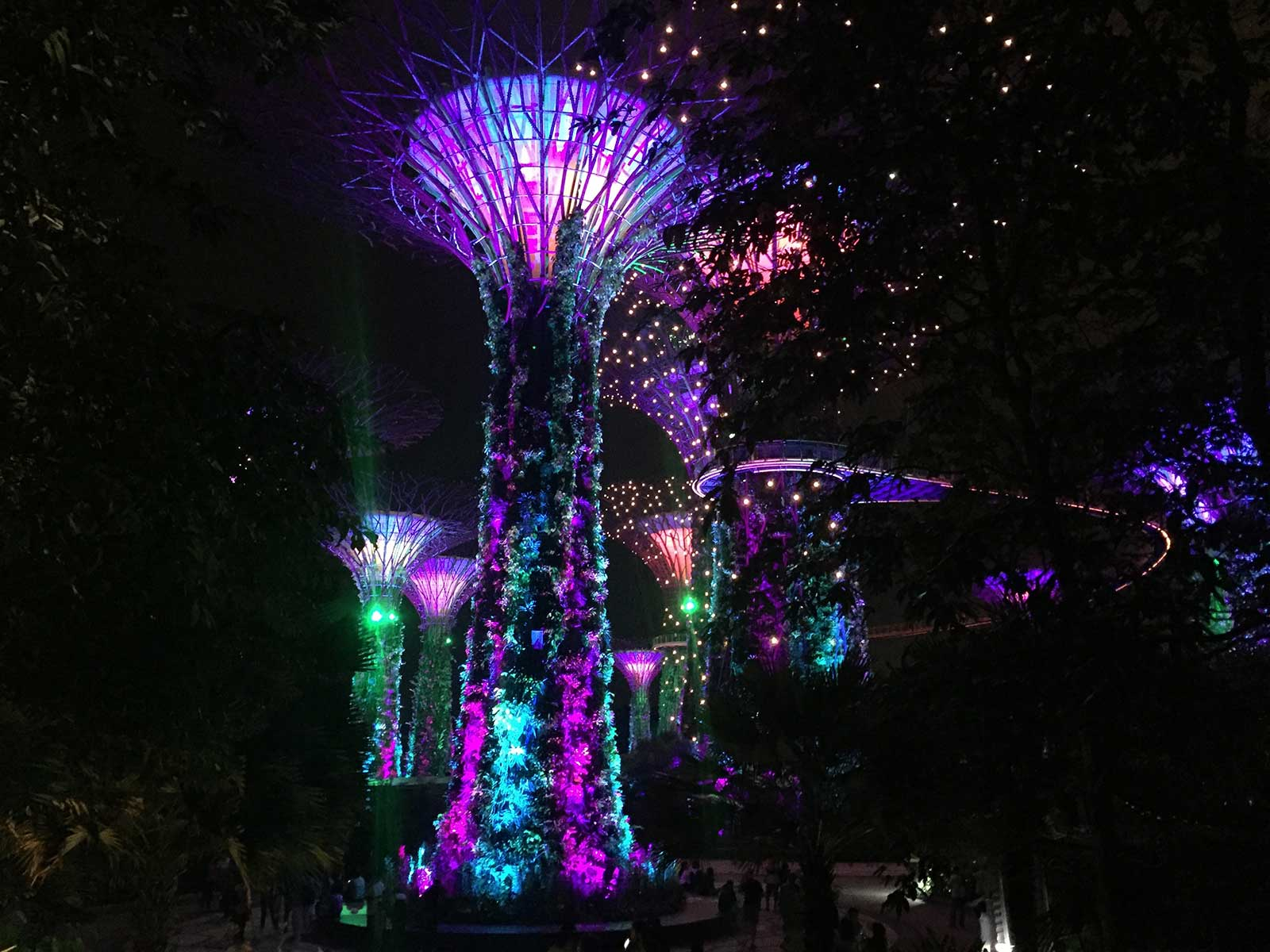 Sehenswürdigkeiten in Singapur; Supertrees, Gardens by the Bay