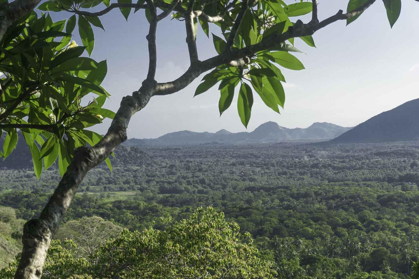 Die ideale Reiseroute für drei Wochen Sri Lanka