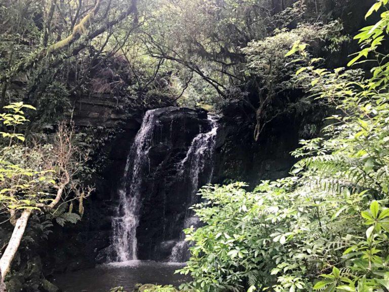 Roadtrip durch Neuseelands Südinsel: Matai Wasserfall