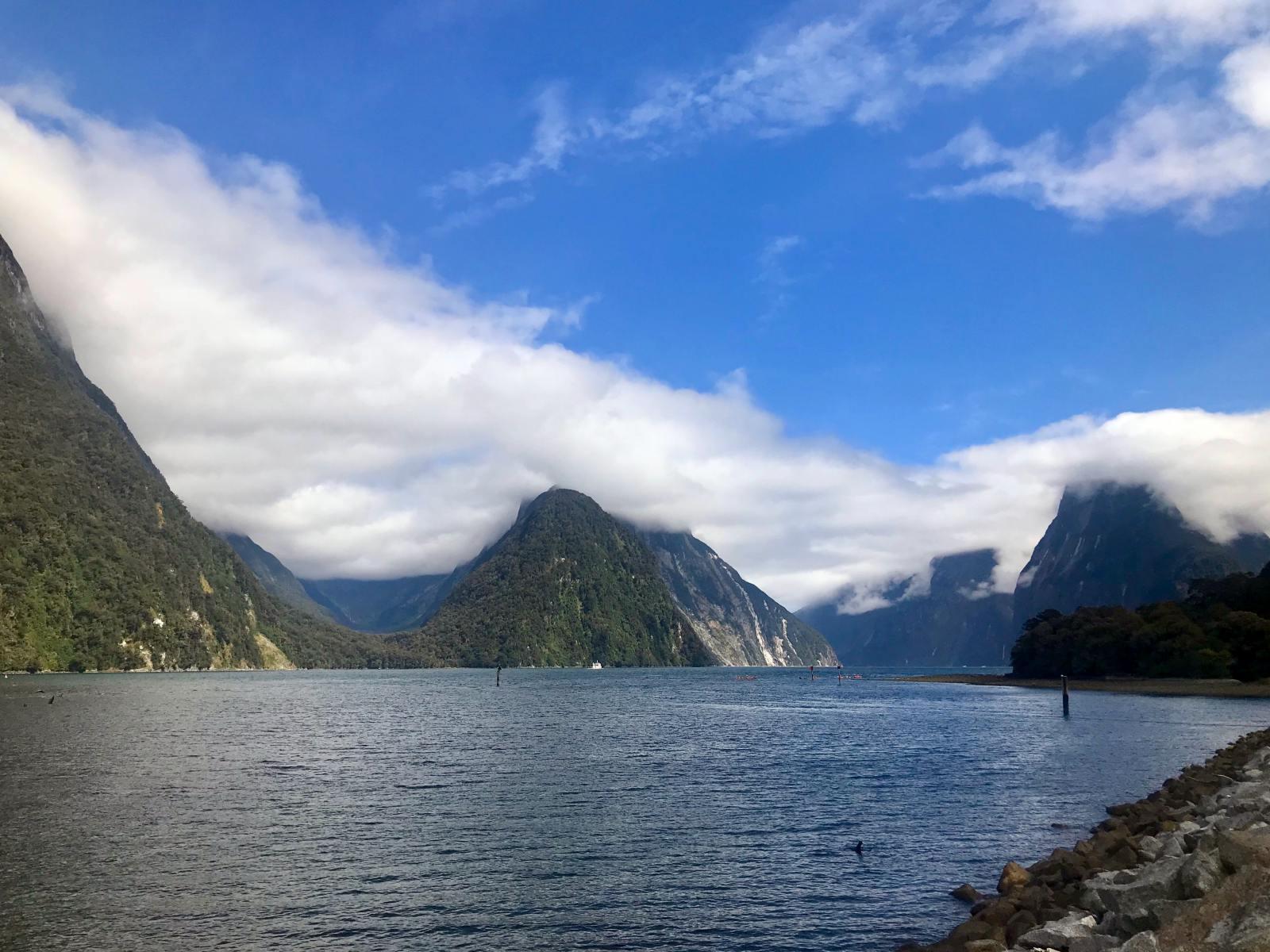 Roadtrip Neuseeland Südinsel: Milford Sound