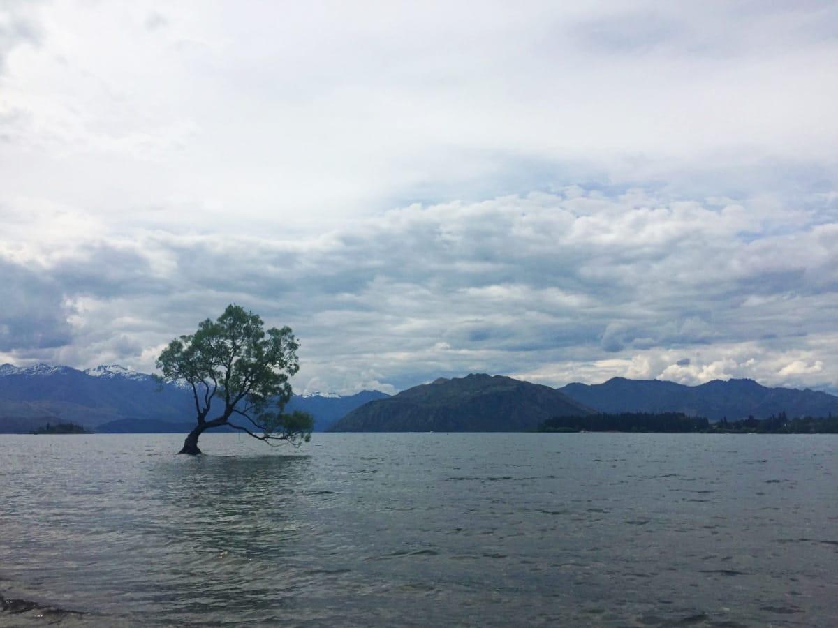 Roadtrip Neuseeland Südinsel: Lake Wanaka