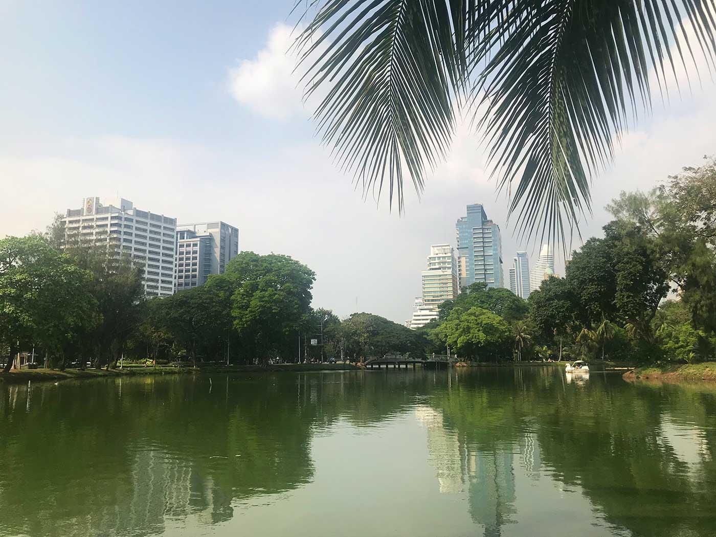 Reisebericht Bangkok: Lumphini Park