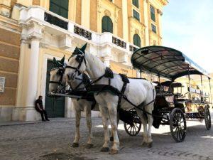 Wien Reisetipps: Fiaker Fahrt