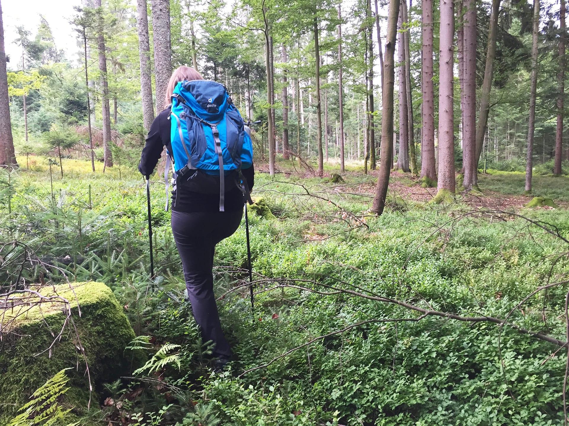 Packliste Wandern; Der richtige Wanderrucksack;